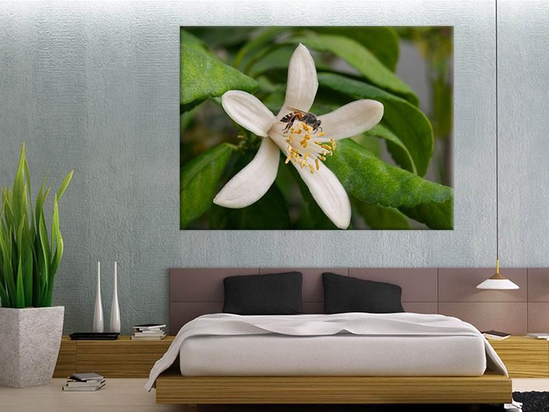 slike na platnu cvece